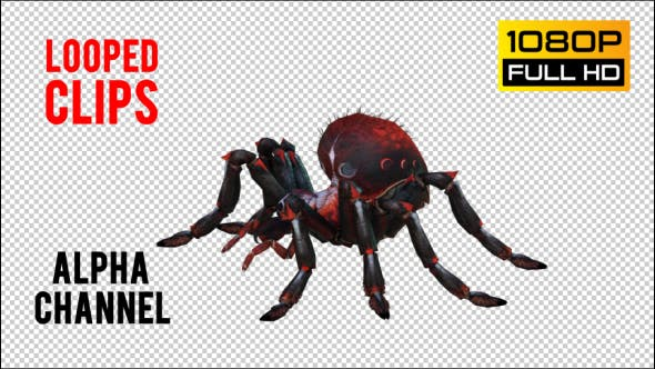 Thumbnail for Spider 4 Realistic Pack 5