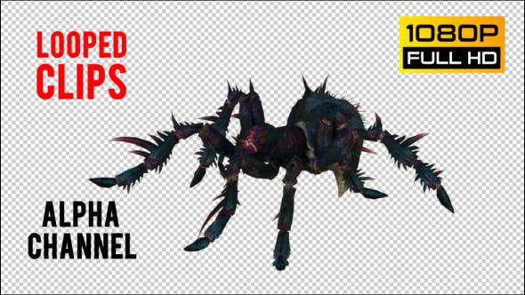 Spider 5 Realistic Pack 5
