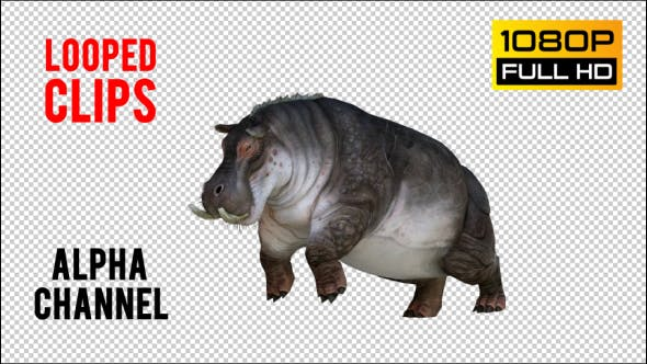 Thumbnail for Hippopotamus 1 Realistic Pack 5