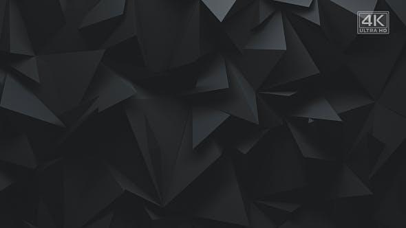 Dark Polygons