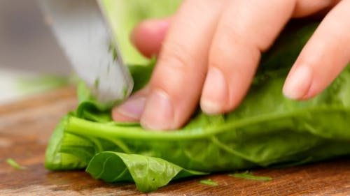 Cook Cuts Spinach Leaves