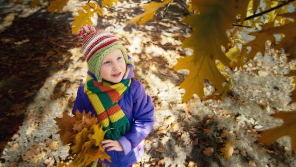 Thumbnail for Little Girl in the Autumn Park Laughs and Tears the Leaves of the Tree