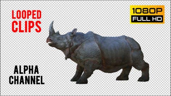 Thumbnail for Rhino 1 Realistic Pack 5