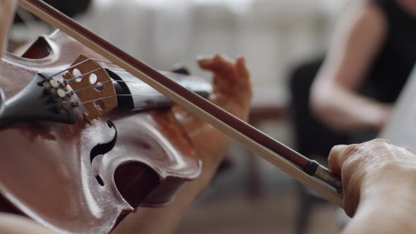 Thumbnail for Human with Bow Plays on Wooden Violin  at Symphony Concert