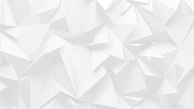 White Polygons