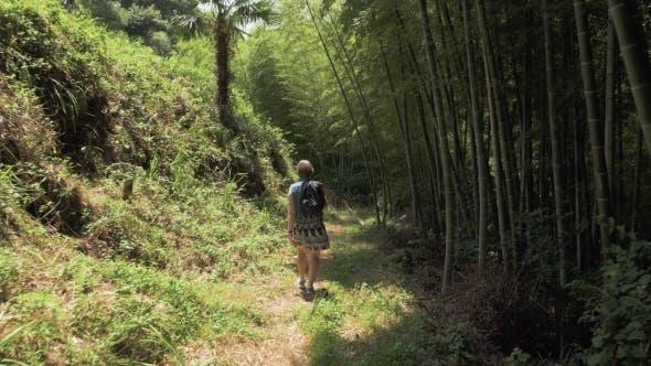 Thumbnail for Young Girl Walking in Tropical Botanical Garden. Batumi, Georgia