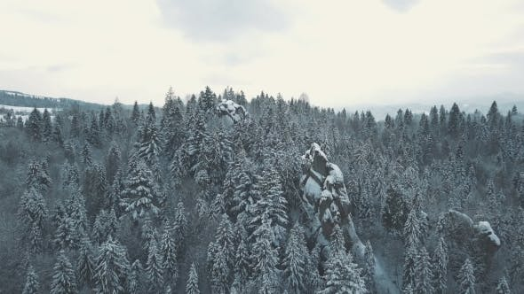 Thumbnail for Winter in Carpathian Mountains