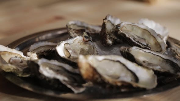 Thumbnail for The Cook Puts the Oysters on a Plate with Ice