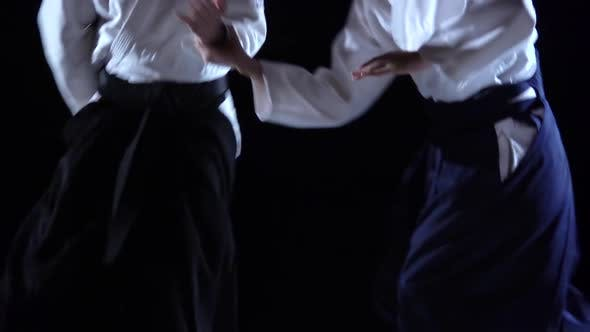 Thumbnail for Two Masters Participants of the Training in Special Clothes of Aikido Hakama Work Out the Methods of