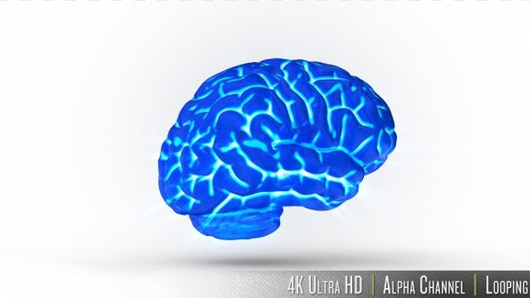 4K Isolated Human Brain Glowing Xray Concept