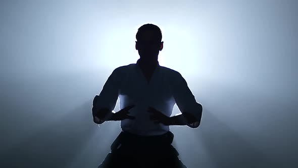 Thumbnail for Silhouette of the Master Martial Arts Aikido Training Isolated on Spotlights Background. Slow Motion