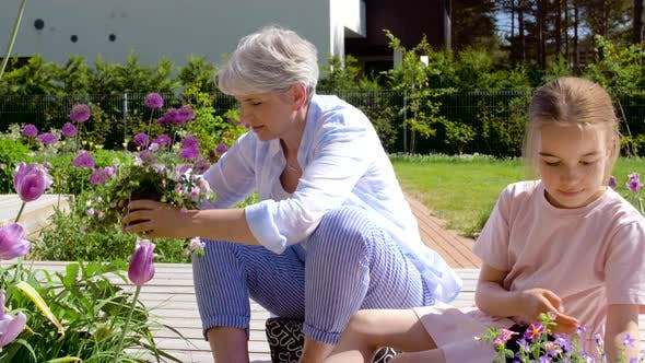 Thumbnail for Grandmother and Girl Planting Flowers at Garden 29