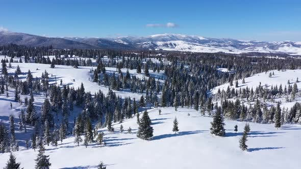 Thumbnail for View of Snow Covered Mountains and Forest in Winter