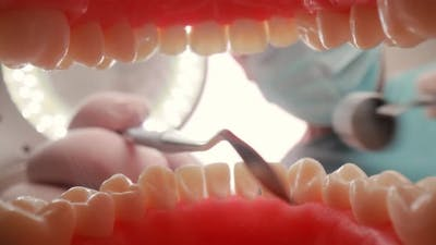 Patient at a Dentist Appointment in a Dental Clinic