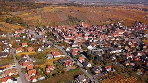 Thumbnail for Flight Over Autumn Riquewihr Vineyards, Alsace, France.