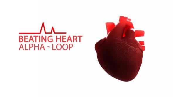 Thumbnail for Beating Heart
