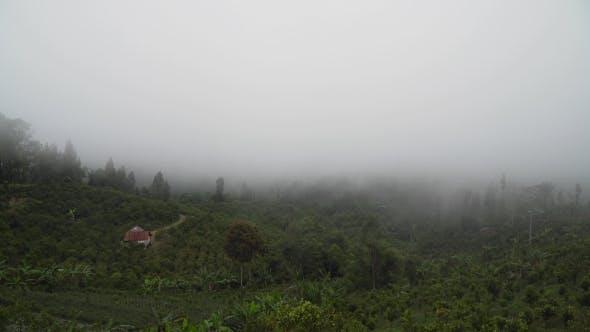 Thumbnail for Ackerland in den Bergen in der Wolke