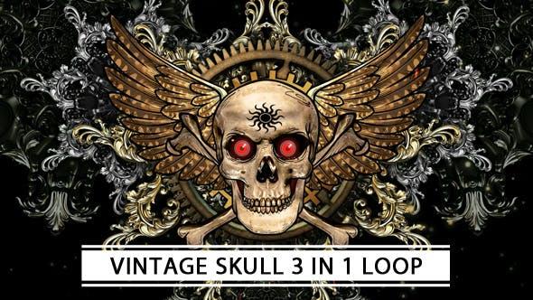 Thumbnail for Vintage Skull