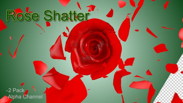 Thumbnail for Rose Shatter
