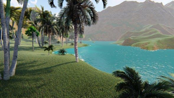 Thumbnail for Palms Beach