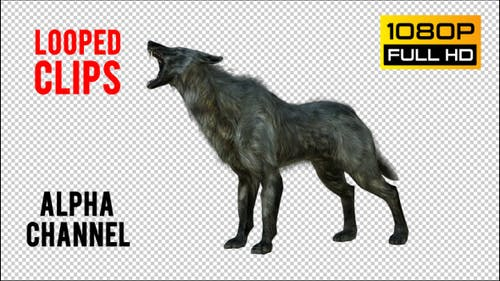 Wolf 2 Realistic Pack 3