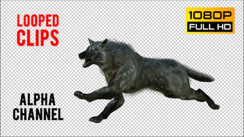 Wolf 3 Realistic Pack 3