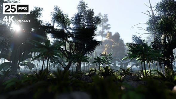Thumbnail for Jungle 4K