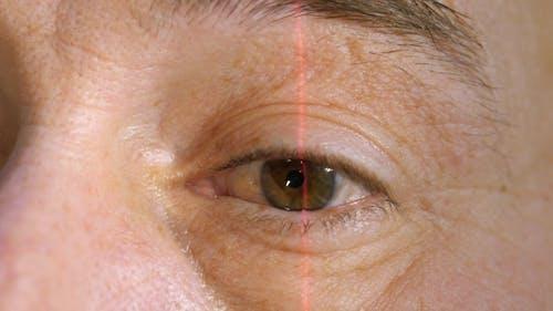 Human Body Parts. Human Eye