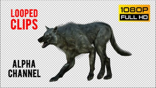 Wolf 5 Realistic Pack 4
