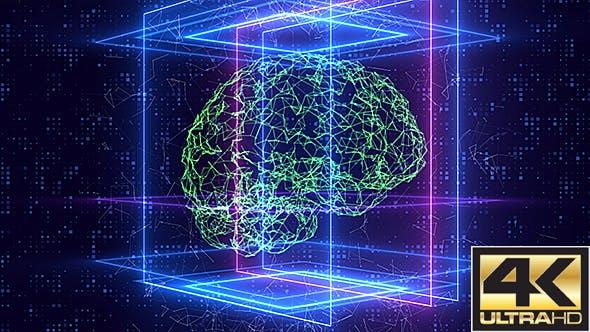 Thumbnail for Plexus Brain Loop Hintergrund