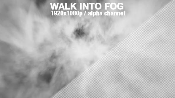 Fog - Walking into Fog