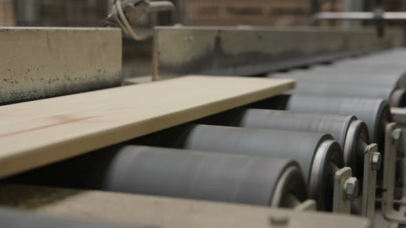 Thumbnail for Production Line In Woodworking Factory