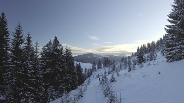 Thumbnail for Ariel - Winter Hike - Young Man Walking in Frosty Mountains