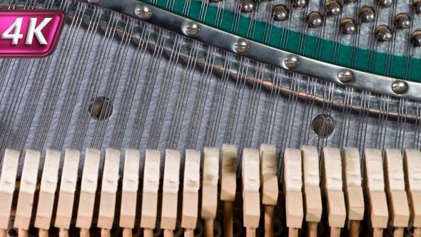 Thumbnail for Hammers Running on Strings