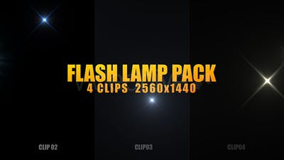 Flash Lamp Pack