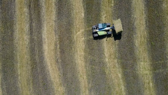 Thumbnail for Tractor Collecting Straw Bales
