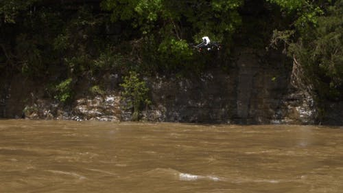 Drone Search Over Flood Waters