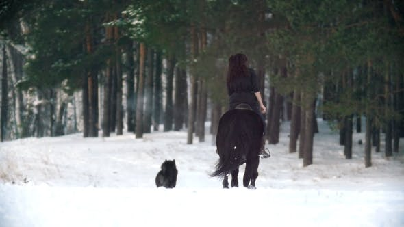 Thumbnail for Longhaired Female Rider Riding a Black Horse Through the Deep Drifts in the Snowy Forest