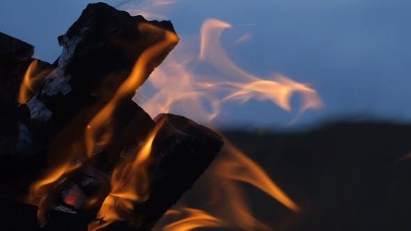 Thumbnail for Bonfire