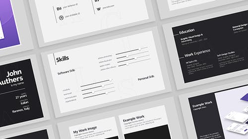 Portfolio - Resume