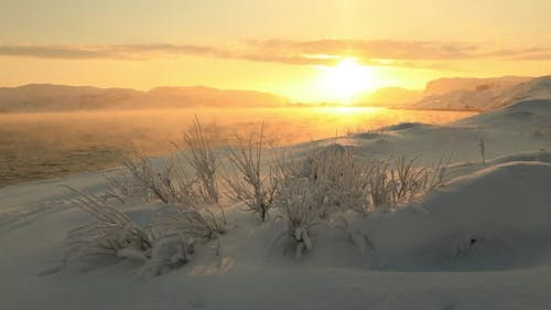 Golden Dawn on the Coast of the Barents Sea in Winter