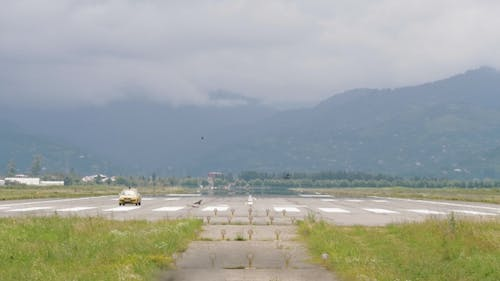 Police Car Disperse Birds on the From the Runway Strip - Georgia