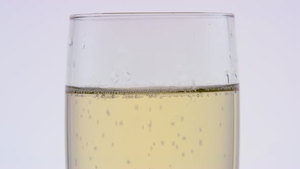 Thumbnail for Glass of Champagne of a  . White Background