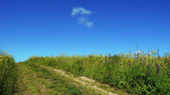Thumbnail for Landstraße im Sommer Feld am schönen Tag
