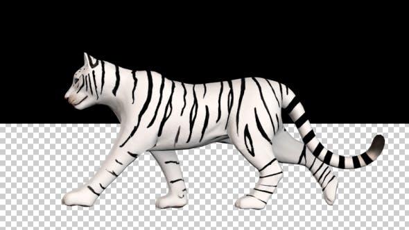 Cover Image for Female White Tiger Walk