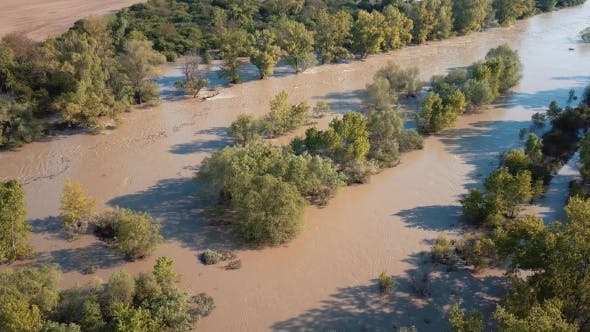 Thumbnail for Aerial Spring River Flood in Forest