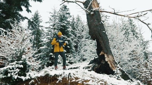 Thumbnail for Man Walks Across Cold Winter Forest Covered with Snow