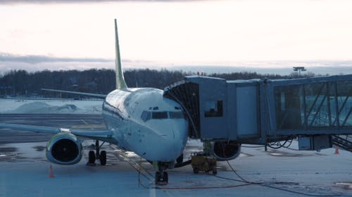 View of Plane Connected with Airbridge