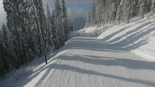 Thumbnail for Skiers on the Highway Among White Snowy Pines. Winter Ski Resort. Aerial View