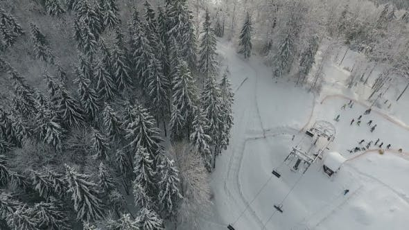 Thumbnail for Snow Forest and Skiers on a Ski Lift Pov. Aerial View. Winter Alpine Ski Resort